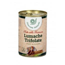 Lumache Trifolate